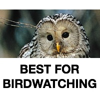 Best For Birdwatching
