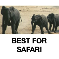 Best For Safari
